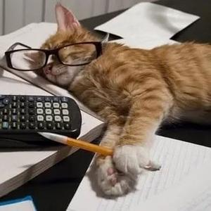 Помощник бухгалтера